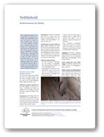 Rustforekomster på stålskipsskrog
